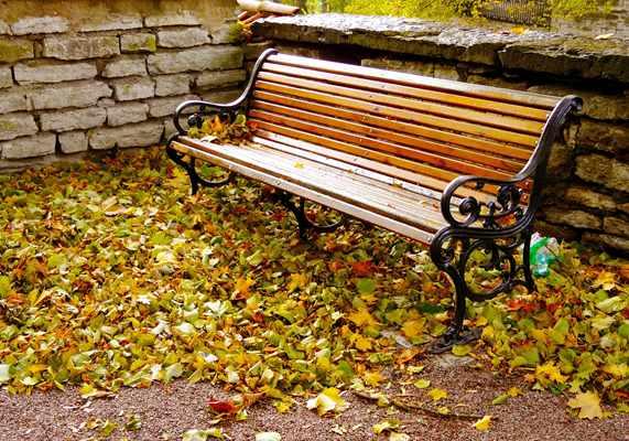 Jakie gadżety wybrać na jesienną kampanię reklamową? - porady i pomysły